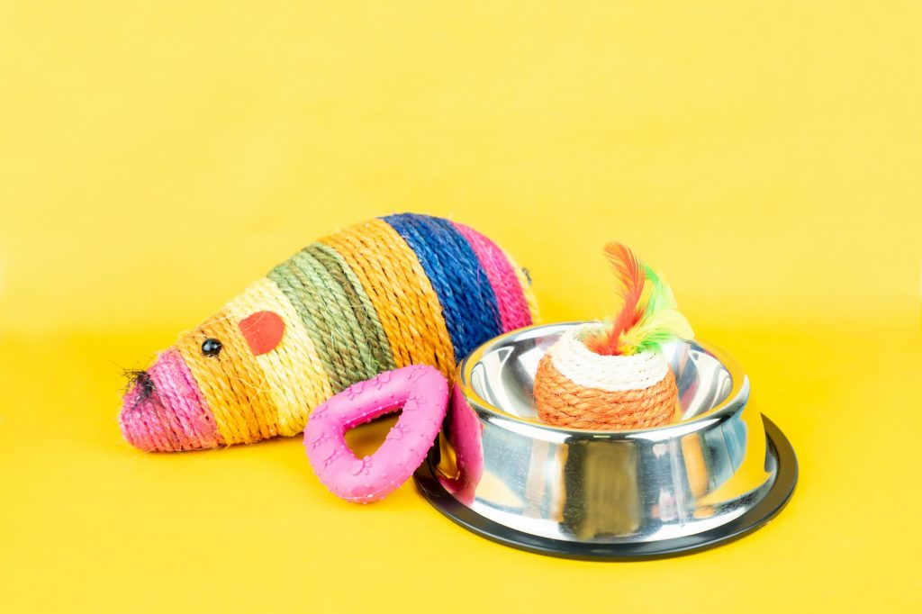 Cat toys next to a cat bowl