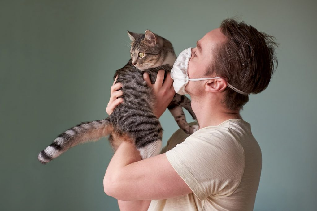 Cat being held by man wearing a face mask