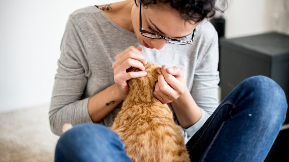 Woman checking cat for fleas